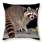 Todays Art 1071 Throw Pillow