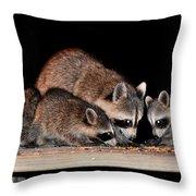 Todays Art 1073 Throw Pillow