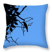 Todays Art 1240 Throw Pillow