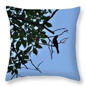 Todays Art 1241 Throw Pillow