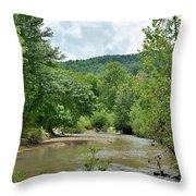 Todays Art 1391 Throw Pillow