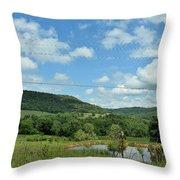 Todays Art 1395 Throw Pillow