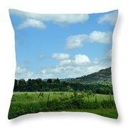 Todays Art 1398 Throw Pillow