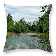 Todays Art 1399 Throw Pillow