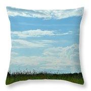 Todays Art 1405 Throw Pillow