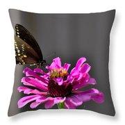Todays Art 1406 Throw Pillow