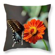 Todays Art 1410 Throw Pillow