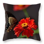 Todays Art 1412 Throw Pillow