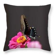 Todays Art 1413 Throw Pillow
