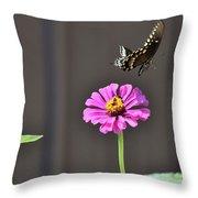 Todays Art 1417 Throw Pillow