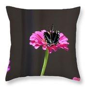 Todays Art 1418 Throw Pillow