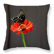 Todays Art 1420 Throw Pillow