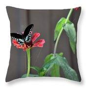 Todays Art 1422 Throw Pillow
