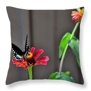 Todays Art 1423 Throw Pillow