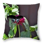 Todays Art 1424 Throw Pillow