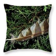 Todays Art 1589 Throw Pillow