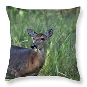 Todays Art 1991 Throw Pillow