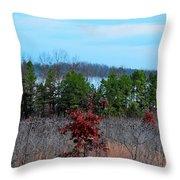 Todays Art 2499 Throw Pillow