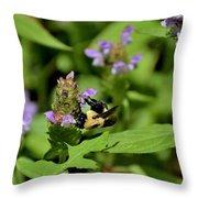 Todays Art 536 Throw Pillow