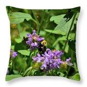 Todays Art 560 Throw Pillow