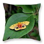 Todays Art 775 Throw Pillow
