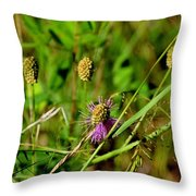 Todays Art 831 Throw Pillow