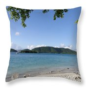 Toes In The Waves Throw Pillow