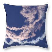 Together We Glide Throw Pillow