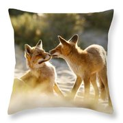 Togetherness - Mother And Kit Moment Throw Pillow
