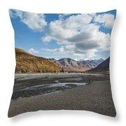 Toklat River Throw Pillow
