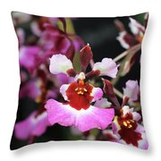 Tolumnia Pink Panther Orchid Throw Pillow