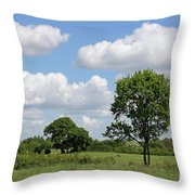 Tolworth Court Nature Reserve In Surrey Throw Pillow