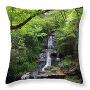 Tom Branch Falls - Gsmnp Throw Pillow