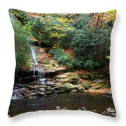 Tom Branch Falls In Nc Throw Pillow