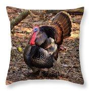 Tom The Turkey Throw Pillow