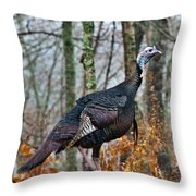 Tom Turkey Early Moning 1 Throw Pillow