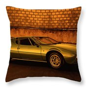Tomaso Mangusta Mixed Media Throw Pillow