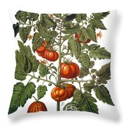 Tomato & Watermelon 1613 Throw Pillow