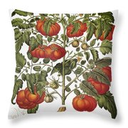 Tomato, 1613 Throw Pillow