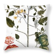 Tomato Plant, 1735 Throw Pillow
