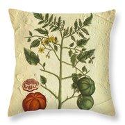Tomato Plant Vintage Botanical Throw Pillow