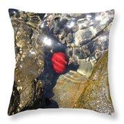 Tomato Sea Throw Pillow
