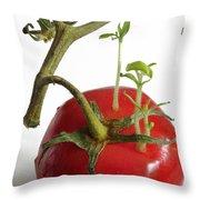 Tomato Seedlings Sprouting Throw Pillow