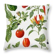 Tomatoes And Related Vegetables Throw Pillow by Elizabeth Rice
