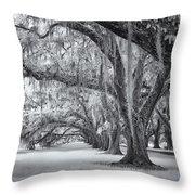 Tomotley Plantation Oaks Throw Pillow