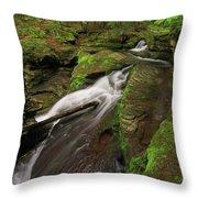 Tompkins Falls Catskills N.y.-7 Throw Pillow
