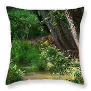 Toms Creek In Late Summer Throw Pillow