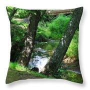 Toms Creek In Summer 3 Throw Pillow