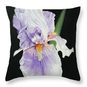 Tonto Basin Iris Throw Pillow