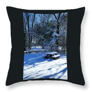 Too Cold To Picnic Throw Pillow